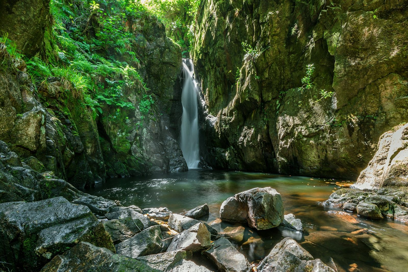 Stanley Ghyll 60ft waterfall is a stunning, shorter walk from the cottages